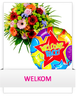 Categorie Welkom